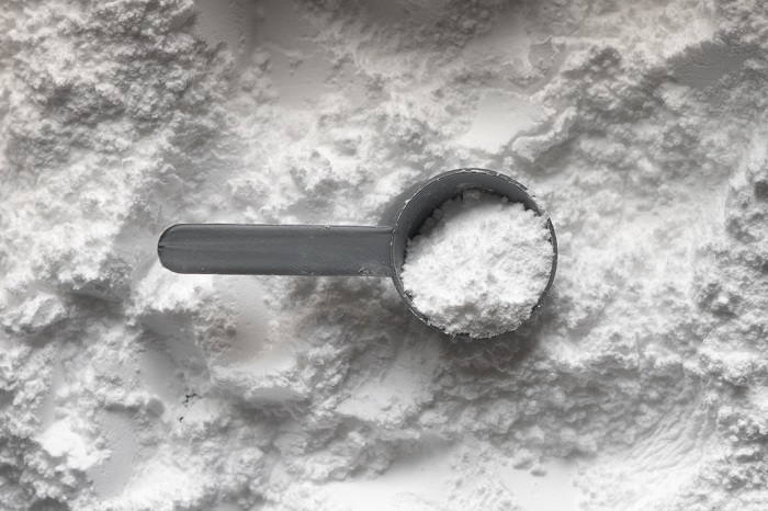 CBD protein powder